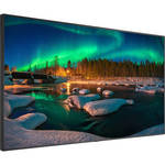 "C981Q 98"" Class 4K UHD Commercial IPS LCD Display"