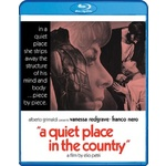 Quiet Place in the Country Product Image