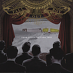 From Under the Cork Tree - Fall Out Boy Product Image