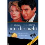 Into the Night Product Image