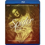 Spider Product Image