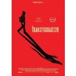 Transfiguration Product Image