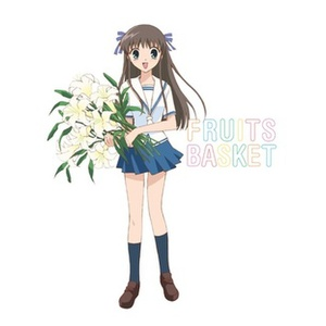 Fruits Basket-Complete Series Product Image