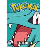 Pokemon All Stars 16 Product Image