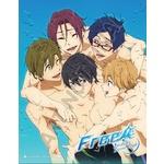Free-Iwatobi Swim Club-Season One