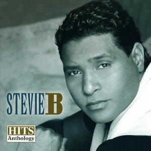 Hits Anthology, Vol. 1 - Stevie B Product Image