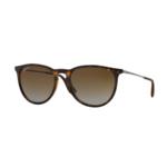Ray-Ban Women's Polarized Erika Sunglasses Product Image