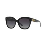 Coach Women's Polarized HC8264 Sunglasses Product Image
