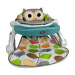 Sit to Walk Activity Center - Owl Product Image