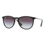 Ray-Ban Women's Erika Sunglasses Product Image