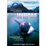Whale Product Image